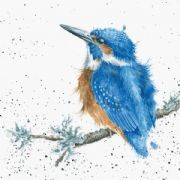 Wrendale King of the River Kingfisher Greeting Card